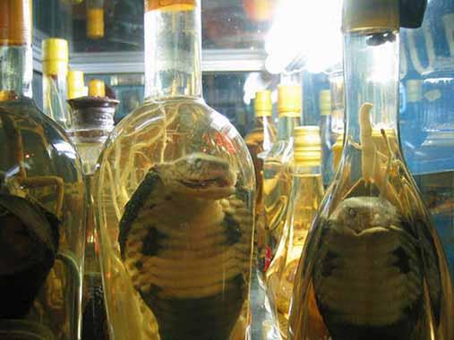 Vino de serpiente | 14 productos culinarios que los gallegos no se comerían en los restaurantes en Galicia
